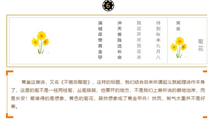 """十大诗词之""""咏菊""""印象(图6)"""