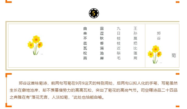 """十大诗词之""""咏菊""""印象(图5)"""